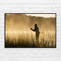 Brad Harris - In The Mist